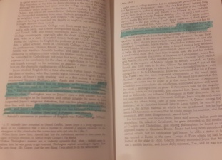 highlighting.jpg