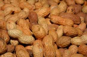 brown peanuts